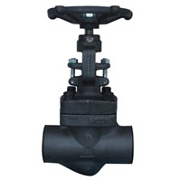 Class 800 Forged Steel Globe Valve