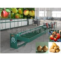 vegetable sorting machinery