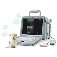 Digital Portable Veterinary Ultrasound Scanner (BW8B-VET)
