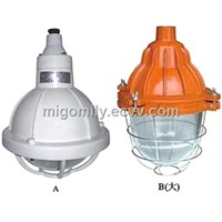 Safety Increased Explosion Proof and Corrosion Proof Luminaire (MBAD52-e200)