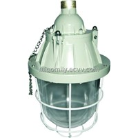 Explosion Proof Lights (MBD56-250W)
