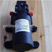 Small Electric Water Pump