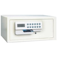Digital Safe (FMC-2040)