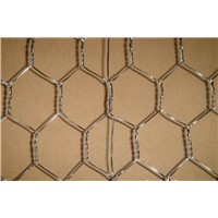 Galvanized Chicken Coop Wire Mesh