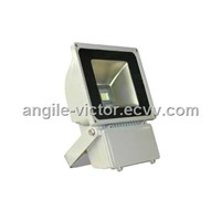 New Arrival LED Flood Light (CE & RoHS) AGFL70