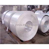 Stainless Steel Cold Rolled Coil with Best Price