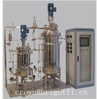 Stainless steel fermentor with seed fermentor
