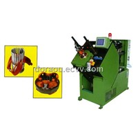 DLM-5 coil and wedge inserting machine