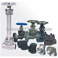 High Pressure Forged Gate Valve with Flange / Pressure Valve