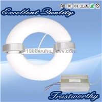 low frequency induction lamp