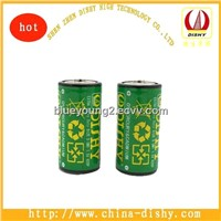 Dishy Dry Carbon R14 Battery