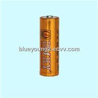 Dishy hot sale LR6 dry alkaline battery