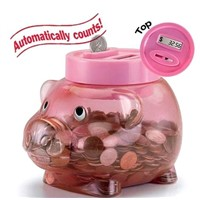 Coin Counting Bank