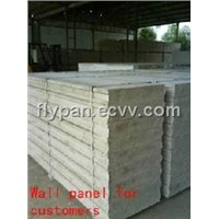 Light Weight Eps Sandwich Wall Panel for Villas