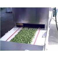 Microwave vegetables dehydrating machine