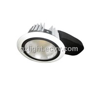 LED Down Light (QZ-D1001)