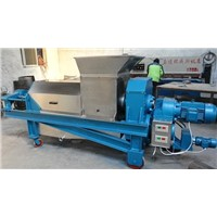 Double Screw Juice Extruder