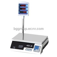 Electronic Weighing Scale with Pole