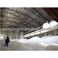 China Crude Salt