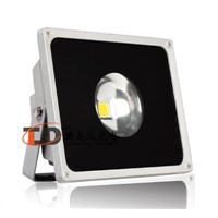 50W LED Projection Light