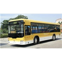 Bus and Bus Chassis (SLG6105T3GER)