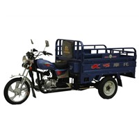 Motorized Tricycle (DY110ZH)