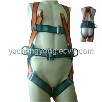 MS71450 SAFETY BELT