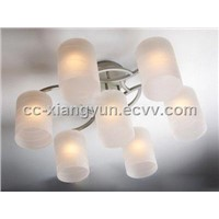Modern fashion hight quality iron lamp 8157-6+1