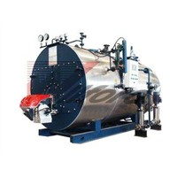 Wns Oil & Gas Fired Steam Boiler