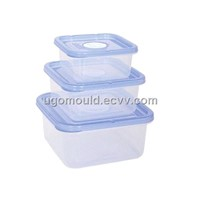 plastic mould- container mould