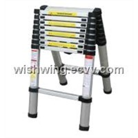 DOUBLE EXTENSION telescopic ladder
