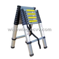 Double folding telescopic ladder