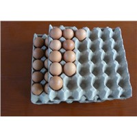 SH-egg tray molding machine