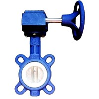 Worm gear operated Wafer Teflon Butterfly Valve