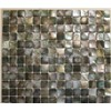 Natural  Square Blacklip Sea Shell Mosaic