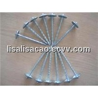 2.5*10g roofing nails