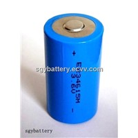 ER34615M 14500mAh 3.6V Primary Lithium battery