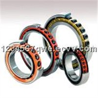 Angular Contact Ball Bearing (7217ACM)