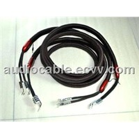 Audioquest Redwood Audio Cable Speaker Cable with 72v Dbs