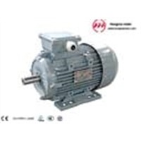 Fenghua City Electric Motor Factory