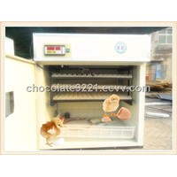 Howard Incubator Egg For Sale YZITE-5