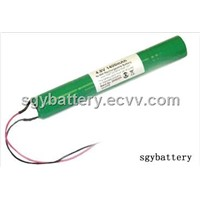 Li-FePO4 9.6V 1250mAh Battery Pack
