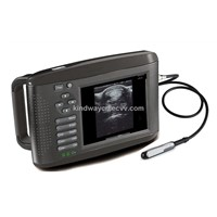 RW-802V veterinary ultrasound scanner