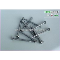 SS 304 Pan Head Phillips Chipboard Screw