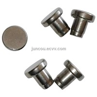 304 Stainless Steel Rivets