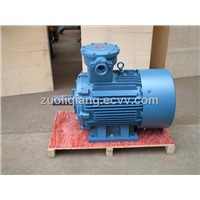 Explosion-Proof Three Phase Induction Motor