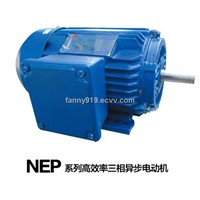NEP Series Premium-Efficiency Induction Motor