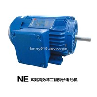 NE Series High-Efficiency Induction Motor