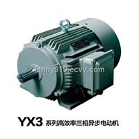 YX3 Series High-Efficiency Induction Motor