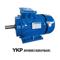 Ykp Series Wide Frequency Three Phase Induction Motor